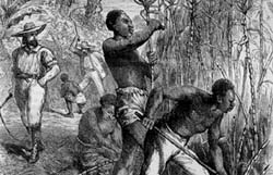 why was slavery abolished How the end of slavery led to starvation and death for millions of black americans in the brutal chaos that followed the civil war,.