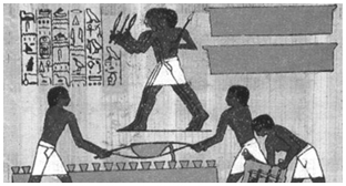 History of Egyptian Science