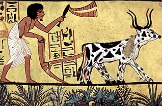 History of Ancient Egyptian Farmers