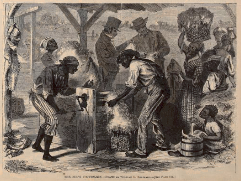 History of Cotton gin
